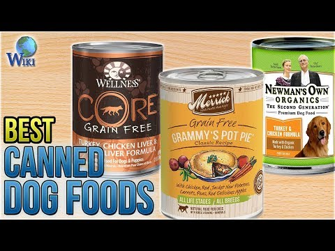 10 Best Canned Dog Foods 2018