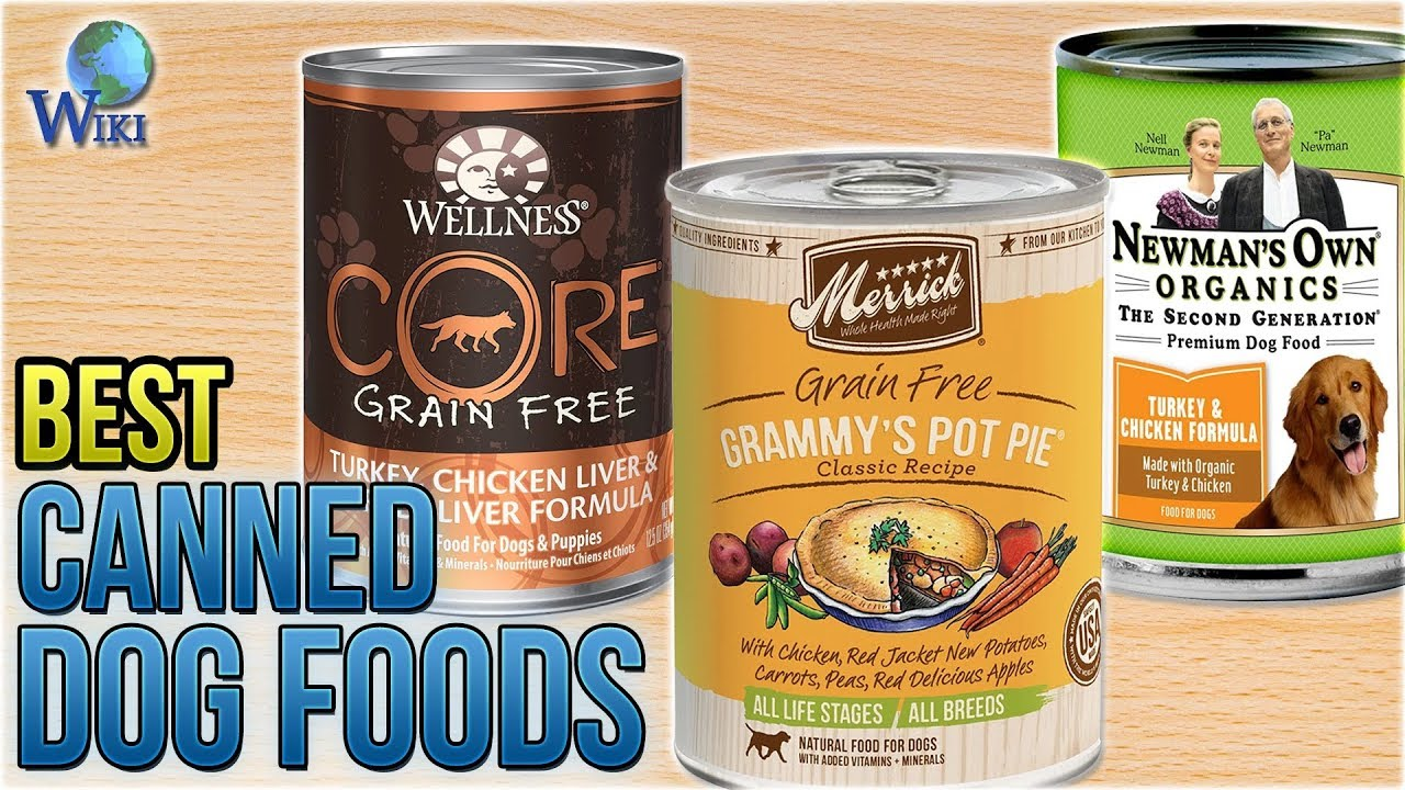 Best Canned Dog Food >> 10 Best Canned Dog Foods 2018