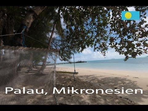 Wildnis auf Carp Island. Palau, Mikronesien