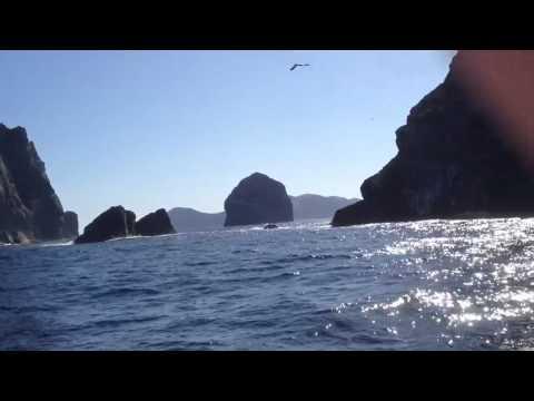 Kilda Cruises. St Kilda