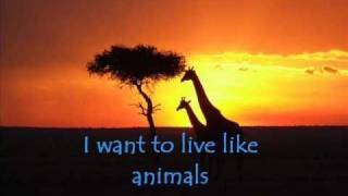 Savage Garden- The Animal Song Lyrics