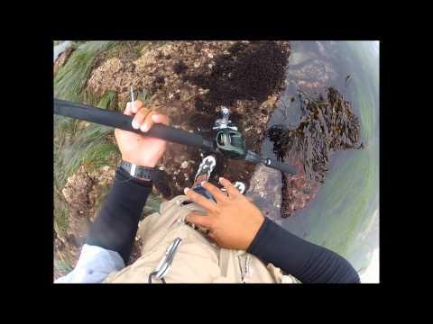CENTRAL COAST POCKET FISHING VOLUME 2.wmv