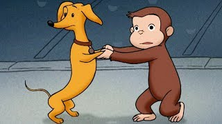 George and Hundley 🐵 Cutest Moments Together 🐵 Funny Cartoon For Kids