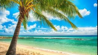 WONDERFUL SUMMER--ROBIN WARD (NEW ENHANCED VERSION) 720P