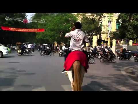 Những chuyện lạ nhất Việt Nam năm 2010   Lạ&Fun   Kênh14