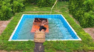 Build Swimming Pool Around Underground House Full Movei