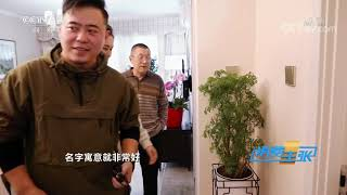 《消费主张》 20191218 温暖过冬:如何用绿植装饰家?| CCTV财经