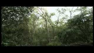 Ulisse - Australia, il continente delle sfide