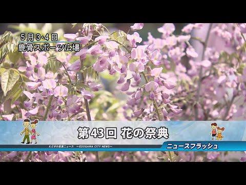 第43回 花の祭典