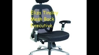Eliza Tinsley desk chair mesh back executive