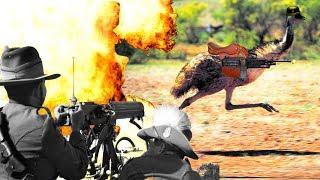 Bi Hài Quân Đội Australia Bị Đánh Bại Bởi Chim Đà Điểu