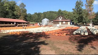 Burt's Farm Is A Destination For All Things Pumpkin Each Fall