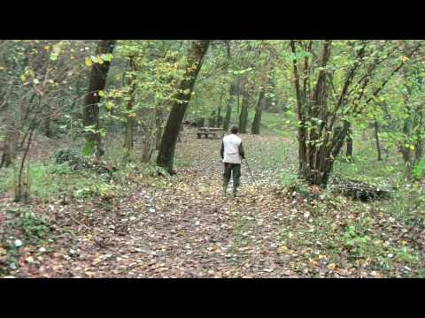Truffle Hunting In Piedmont Part 1