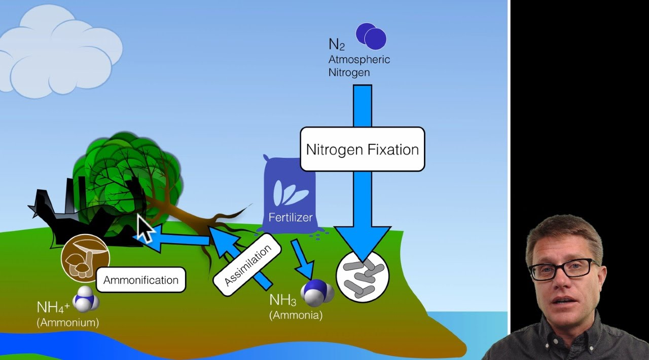 biogeochemical cycles [ 1280 x 711 Pixel ]