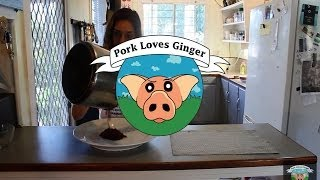 Pork Loves Ginger - Red Wine Salt