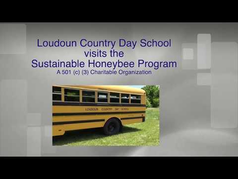 Loudoun Country Day School - 4th Grade