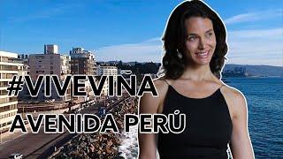 60 imperdibles de Viña: AV PERÚ VIÑA / Juan Gabriel (en vivo) - Festival de Viña  #CHILE