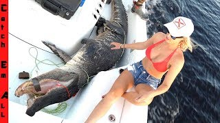 gator-comes-back-to-life-in-boat
