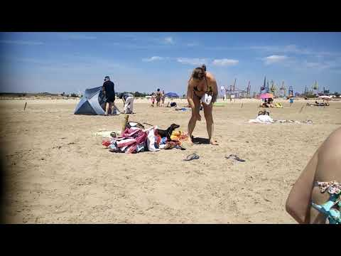 Existen playas exclusivas para perros? from YouTube · Duration:  9 minutes 22 seconds