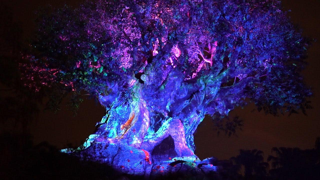 Disney S Animal Kingdom Is The Best Night Time Park