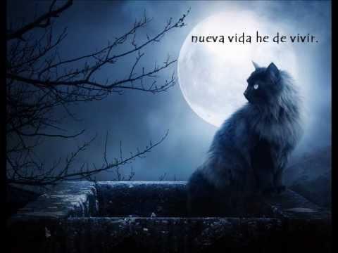 Kika Edgar - Recuerdo  (Memory)(from Cats) + Letra...Royer Xatzigiannis.