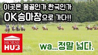 승마는 즐거워 몽골과 같은 제주 초원, OK승마장 OK…