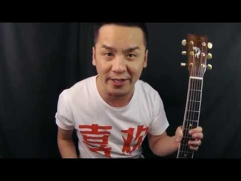 Martin D16RGT Guitar Review in Singapore