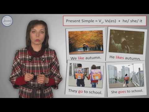 Английский 7 класс. Present Simple и Present Continuous