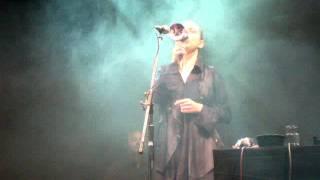 Adriana Calcanhotto en Rosario - Argumento