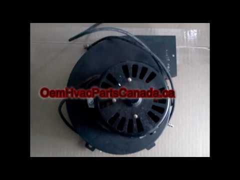 Fasco A079 Furnace Inducer Motor - Inducer Motor Not ...