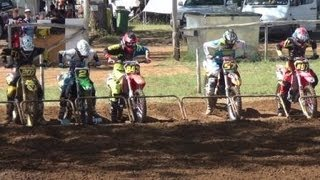 Robbie, Ashton, Travis, Cody, Lochie & Jake Racing At Warwick (wddbc) 14/04/2013.
