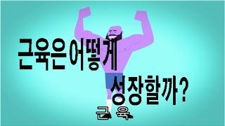 근육은 어떻게 성장할까? │한글 자막