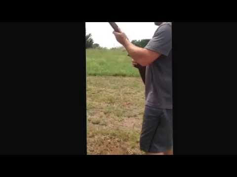 marlin glenfield model 60 .22 LR from YouTube · Duration:  1 minutes 30 seconds
