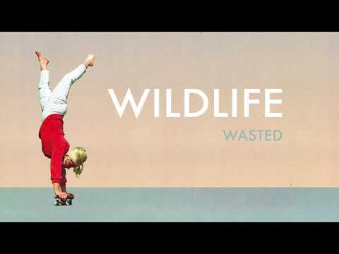 """Wildlife - """"Wasted """" (Official Audio) Mp3"""