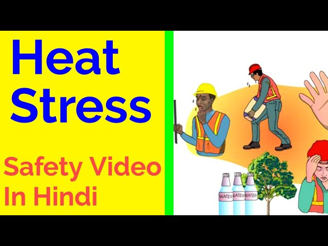 Heat Stress Safety Video In Hindi Heat Stress Prevention In Hindi Youtube