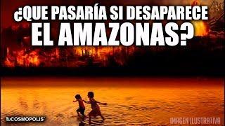 ¿Que PASARÍA SI DESAPARECE el AMAZONAS?