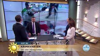 """Om våld i hockeyrinken: """"Var drar man gränsen?"""" - Nyhetsmorgon (TV4)"""