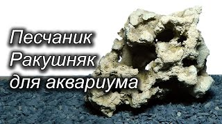 Песчаник для аквариума (Миотис, Ракушняк, Риф)