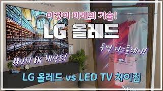 LG 올레드 TV 이것이 미래다! / 88인치 8K해상도 TV /  올레드 TV와 LCD(LED) TV 차이점 /  투명하고, 구부리고, 돌돌말고, 이어붙이는 LG 올레드