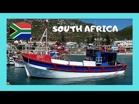 Spectacular KALK BAY, the harbour and fish market (South Africa)