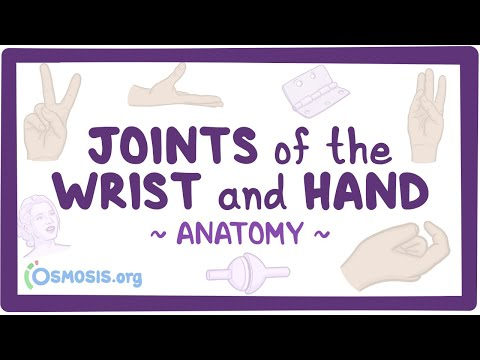 Download Joints of the wrist and hand: Anatomy