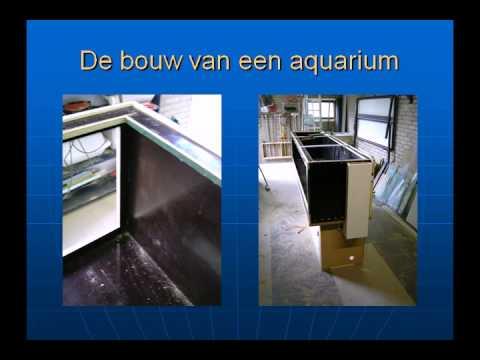 Design Aquarium Kast : Hoe bouw ik een aquarium mov youtube