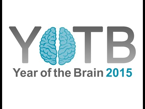 YOTB Webinar - Understanding Stress from a Brain Health Perspective