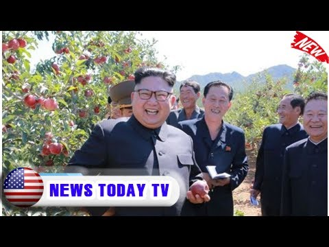 North korea secret bioweapons plan - kim 'building factories for genetic modification'   News Today