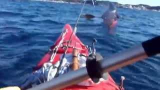 KAMAKURAカヤック釣りバカ日記(1/3)-スズキ釣りは次回は必ず釣れるよ⑤.