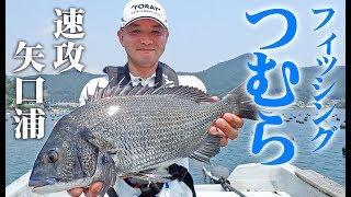 楽しいちぬ釣り 开心钓黑鲷#11 盛夏の黒鯛かかり釣り 三重 矢口浦 Extreme Bream Fishing
