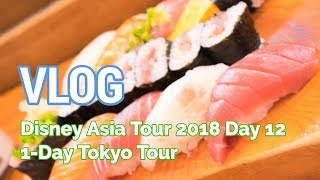 VLOG: Disney Asia Tour - Day 12 (1-Day Tokyo Tour)
