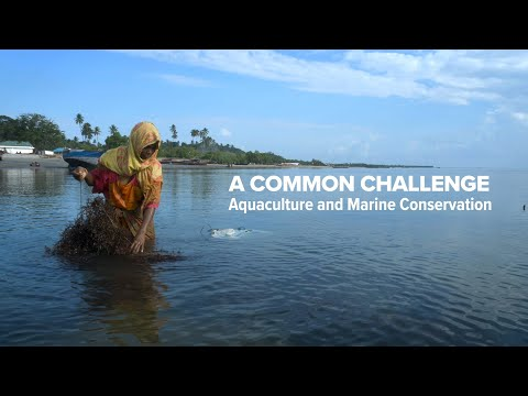 'A Common Challenge - Aquaculture And Marine Conservation