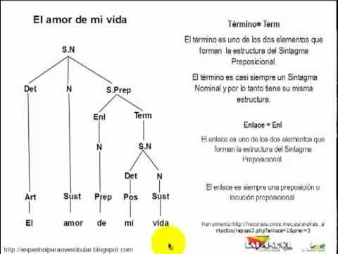 Análisis Sintáctico Ejemplo Sintagma Nominal Mp4