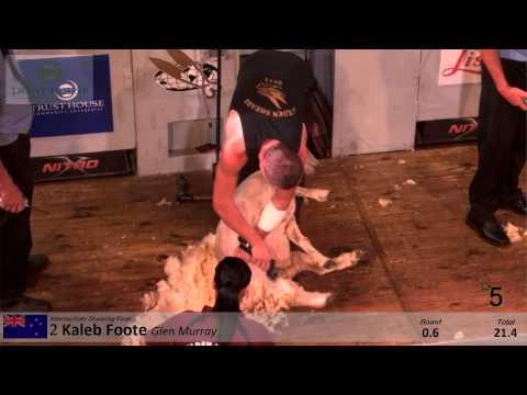 Intermediate Shearing Final  (Trust House Ltd) - 2015 Golden Shears